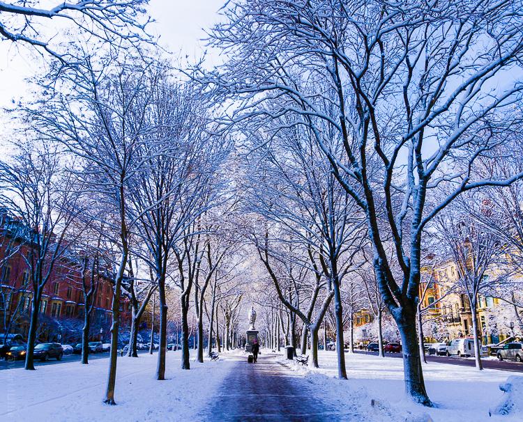 Boston Winter Activities Meriel